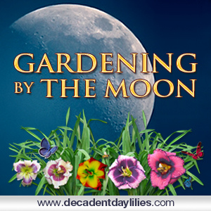 How to garden by the moon