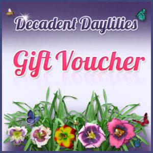 Decadent Daylilies gift voucher
